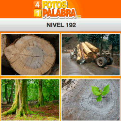 4-fotos-1-palabra-FB-nivel-192
