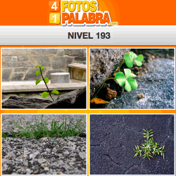 4-fotos-1-palabra-FB-nivel-193