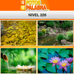 4-fotos-1-palabra-FB-nivel-228