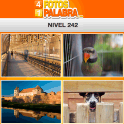 4-fotos-1-palabra-FB-nivel-242