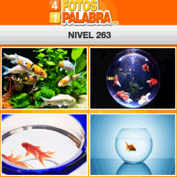 4 fotos 1 palabra facebook nivel 263
