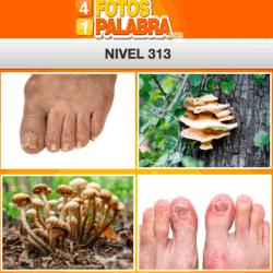 4-fotos-1-palabra-FB-nivel-313