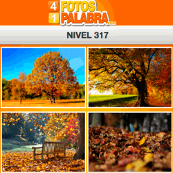4-fotos-1-palabra-FB-nivel-317