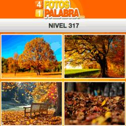 4-fotos-1-palabra-FB-nivel-317