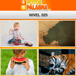 4-fotos-1-palabra-FB-nivel-325