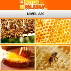 4-fotos-1-palabra-FB-nivel-339