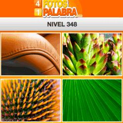 4-fotos-1-palabra-FB-nivel-348