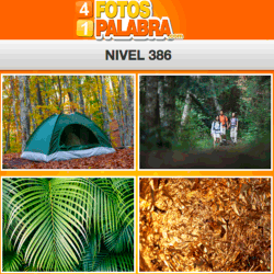 4-fotos-1-palabra-FB-nivel-386