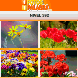 4-fotos-1-palabra-FB-nivel-392