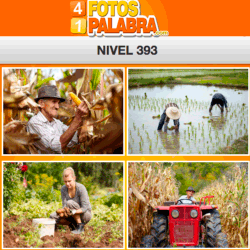 4-fotos-1-palabra-FB-nivel-393
