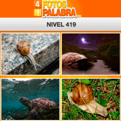 4-fotos-1-palabra-FB-nivel-419