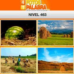4-fotos-1-palabra-FB-nivel-463