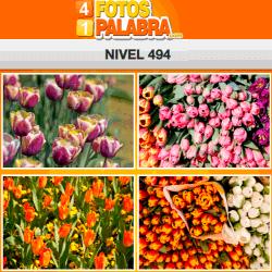 4-fotos-1-palabra-FB-nivel-494