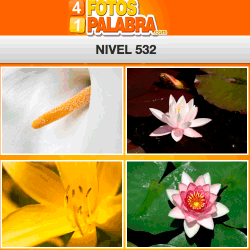 4-fotos-1-palabra-FB-nivel-532
