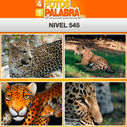 4-fotos-1-palabra-FB-nivel-545