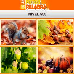 4-fotos-1-palabra-FB-nivel-555