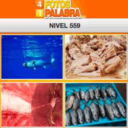 4-fotos-1-palabra-FB-nivel-559