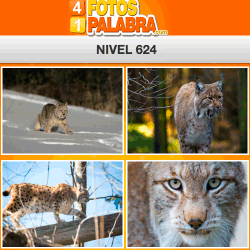 4-fotos-1-palabra-FB-nivel-624