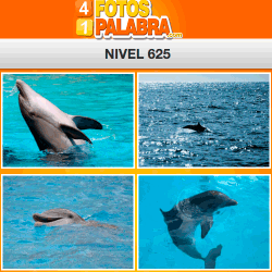 4-fotos-1-palabra-FB-nivel-625