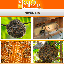 4-fotos-1-palabra-FB-nivel-640