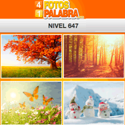 4-fotos-1-palabra-FB-nivel-647