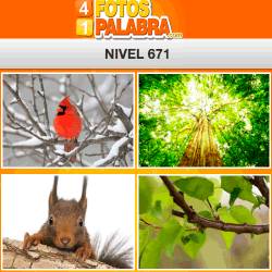 4 Fotos 1 Palabra Facebook Nivel 671