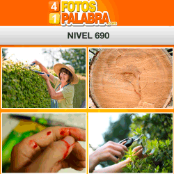 4 Fotos 1 Palabra Facebook Nivel 690