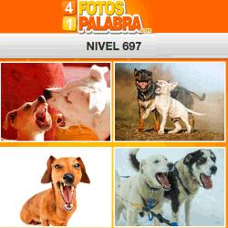 4 Fotos 1 Palabra Facebook Nivel 697