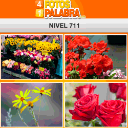 4 fotos 1 palabra FB nivel 711