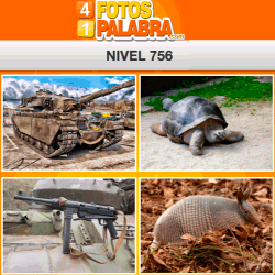 4-fotos-1-palabra-FB-nivel-756