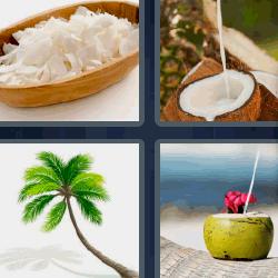 4 fotos 1 palabra palmera
