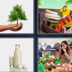 4 fotos 1 palabra verduras