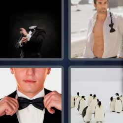 4 fotos 1 palabra pingüinos pajarita modelo traje