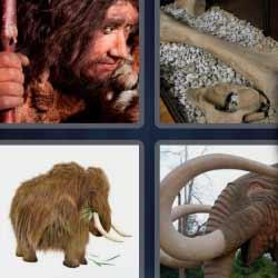 4 fotos 1 palabra huesos elefante hombre prehistórico