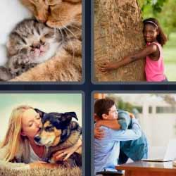 4 fotos 1 palabra gatitos