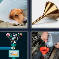 4 fotos 1 palabra perro con protección