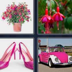4 fotos 1 palabra coche rosa zapatos flores