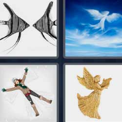 4 fotos 1 palabra peces cielo
