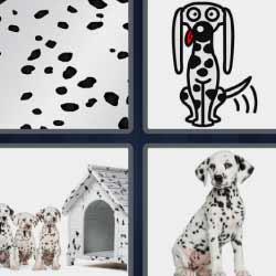 4 fotos 1 palabra perro blanco manchas negras