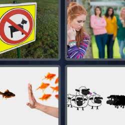 4 fotos 1 palabra cartel perro prohibido