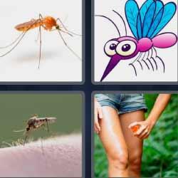 4fotos1palabra picadura insecto