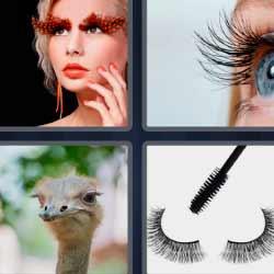 4 fotos 1 palabra cejas avestruz