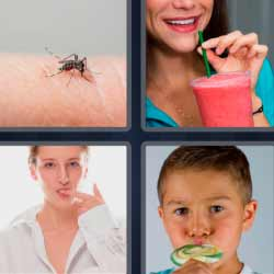 4 fotos 1 palabra mosquito