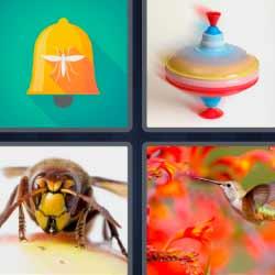 4fotos 1palabra avispa colibrí