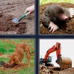 4 fotos 1 palabra excavadora grande
