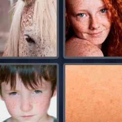 4 fotos 1 palabra caballo