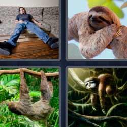 4 fotos 1 palabra hombre tirado