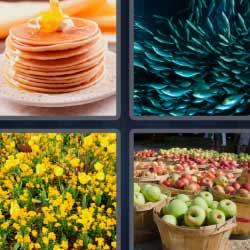 4 fotos 1 palabra manzanas flores peces