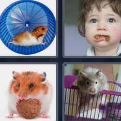 4 fotos 1 palabra ratón en la rueda