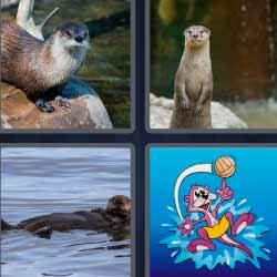 4 fotos 1 palabra animal agua